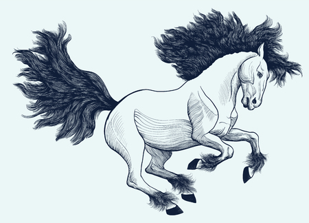 Graphic linear illustration of a galloping Friesian horse.