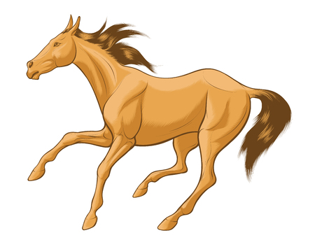 Quick sketch of beige horse with brown mane, galloping free. Vector clip art and design element for equestrian farms. Emblem of an agricultural animal. Vetores