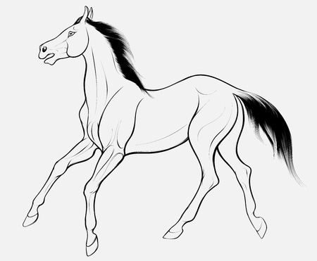 Quick sketch of monochromatic horse with dark long mane, galloping free. Vector clip art and design element for equestrian farms. Emblem of an agricultural animal.