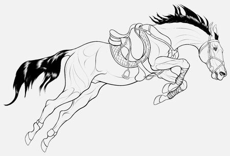 Stallion overcomes an obstacle in a powerful jump. Illustration of a steed equipped for show jumping competition with shabrack and bandages. Linear vector clip art for cross-country equestrianism.