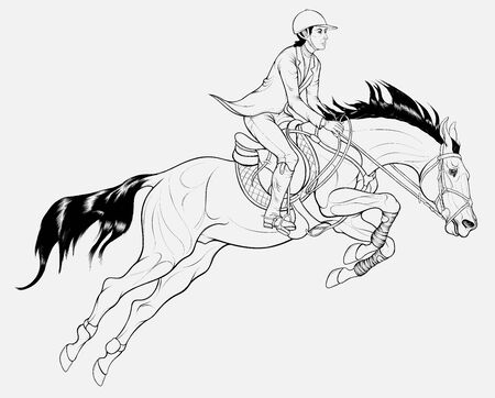 Rider on horseback overcomes a fence on show jumping course. Black and white Illustration of a stallion and sportswoman perform at competition. Vector linear clip art for equitation.