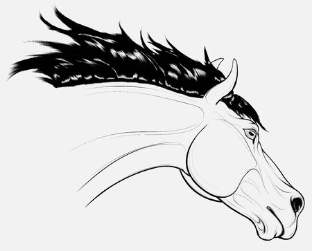 Outline portrait of a running horse with long fluttering mane. Stallion lowered its head. Vector clip art for equestrian clubs and for coloring books hobby. Vecteurs