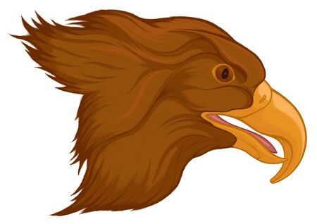 Portrait of a flying brown eagle with its mouth open. Image of a hunting hawk.