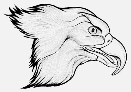 Linear portrait of a flying eagle with its mouth open. Vector image of a hunting hawk. Ilustrace