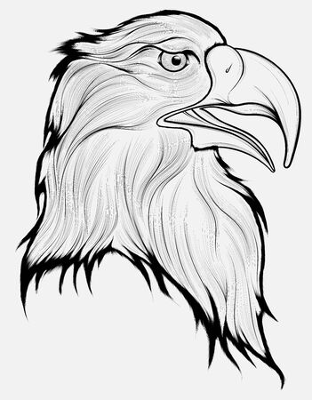 Black and white head of a disheveled eagle, looking predatory. Linear vector illustration of a bird of prey.
