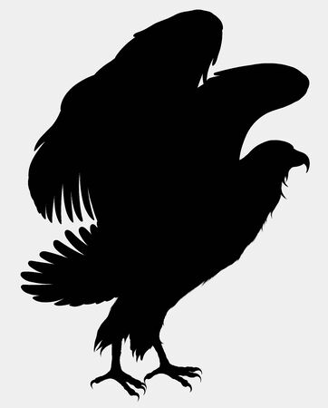 Eagle flaps its wings, preparing for takeoff. Vector silhouette of a standing hawk. Ilustrace