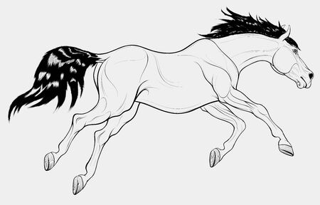 Running horse with long mane. Stallion lowered its head and galloping with legs stretched out. Vector linear illustration for equestrian goods.