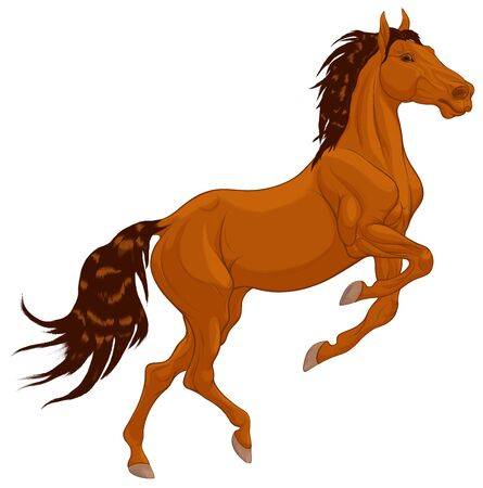 Chestnut horse reared and bent its front legs. Prancing stallion pricked up its ears and stared ahead with dilated nostrils. Vector design element for equestrian goods.