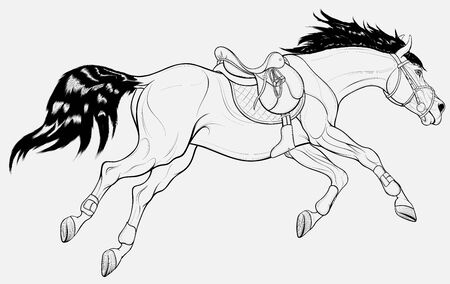 Running horse equipped for show jumping practice. Steed wears sport saddle, English bridle and splint boots.  Stallion gallops with legs stretched out. Vector linear clip art for equestrian clubs.
