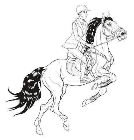 Performance at show jumping competitions. Horse reared and bent its front legs. Rider dressed in jacket and breeches sits on a stallion equipped with sport tack. Vector clip art for equestrian goods.
