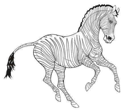 Galloping plains zebra pricked up its ears. Linear black and white illustration of a striped stallion. Vector emblem, design element for african wildlife tourism and coloring books.