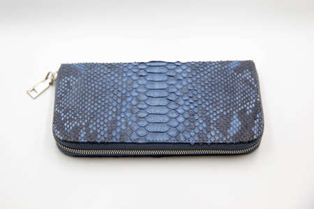 Blue snakeskin wallet purse isolated on a white background. Fashion concept