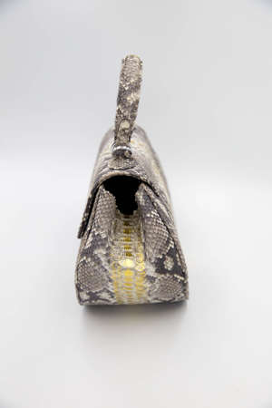 Luxury snakeskin python leather handbag isolated on a white background. Fashion concept with trendy skin.