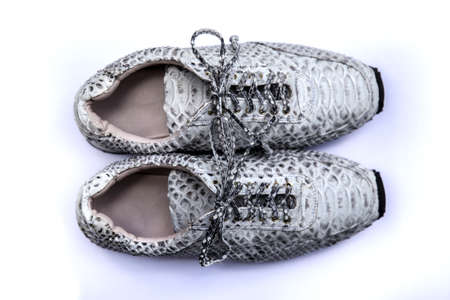 Stylish white and black python sneakers on white background. Fashion trendy concept.