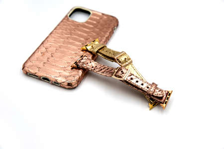 Case for smartphone from python skin with two watchbands. Isolated on white background 스톡 콘텐츠