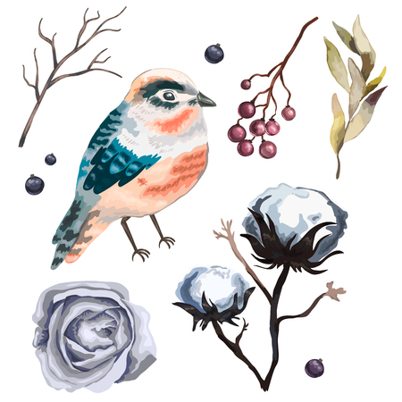 wild berry: Collection vector flowers , branches, cotton,  bird, wild  Berry and leaves in vintage watercolor style. Hand drawn watercolor vector illustration. Illustration