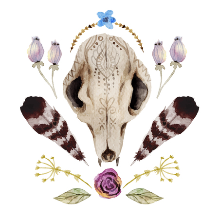 Watercolor  vector boho illustration with skull, flowers, feathers, leaves. Ethnic animal skull with ornaments. Beautiful floral design.