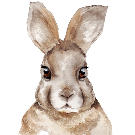 Watercolor rabbit portrait