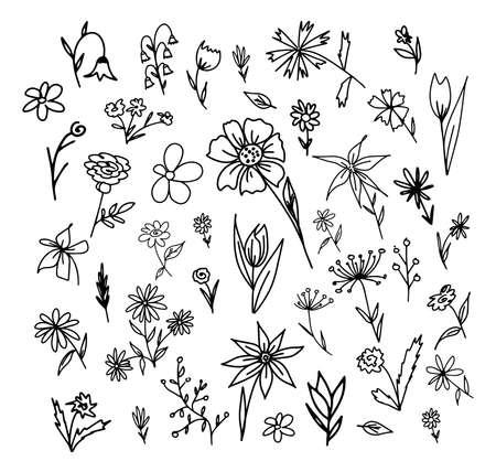 Hand drawn set of flowers. Vector illustration. Doodle lines, frame elements.