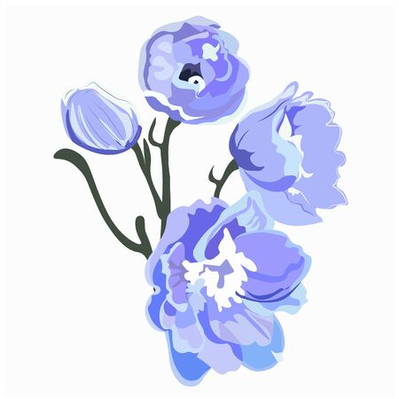 Delphinium or larkspur purple blooming flowers isolated on white background. Elegant detailed botanical drawing of wild flowering plant. Hand drawn realistic vector illustration Vector Illustration
