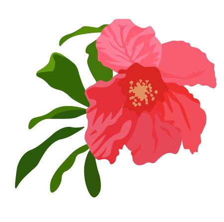 Vector stock illustration of a pomegranate Flower. Red delicate flower close-up. rosebud with delicate petals. Summer greeting card template for wedding, party. A sheet of watercolor isolated on a whi