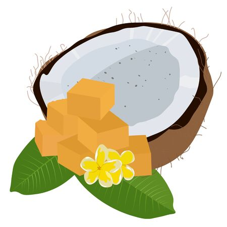 Vector stock illustration of palm sugar. Indonesian Cubes of sweet refined tropical sugar. coconut and sugar cane, Frangipani flowers, Thailand, fructose sucrose glucose caramel granules
