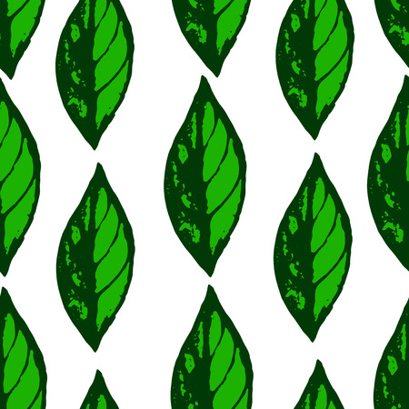 leafage: hand draw leaves