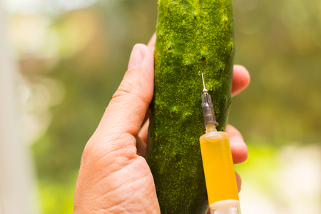 injection in cucumber. Concept of genetically modified food