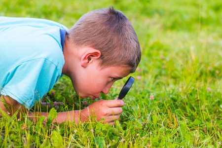 teenage boy treats plants through a magnifying glass