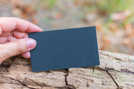 blank for visual presentation of design for business card