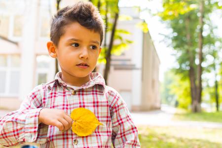 boy with autumn yellow leaf in the Park Stock Photo
