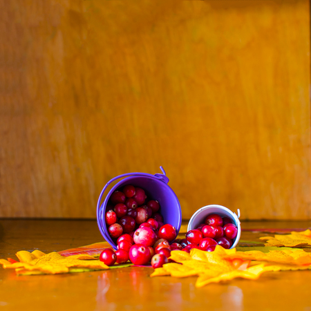 scattered berries of a cranberry on a yellow leaves