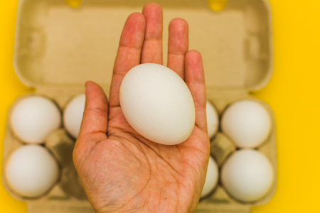 egg in hand on background of other eggs Stock Photo