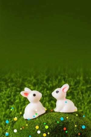 2 rabbits on grass background. close-up figures Stok Fotoğraf
