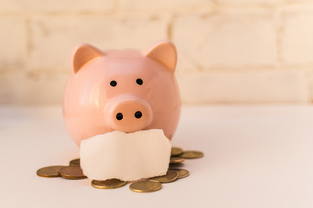 piggy Bank with coins on a light background with a place for the inscription Stock Photo