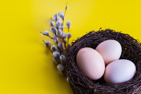 chicken eggs in a nest with a twig of willow. happy Easter concept.