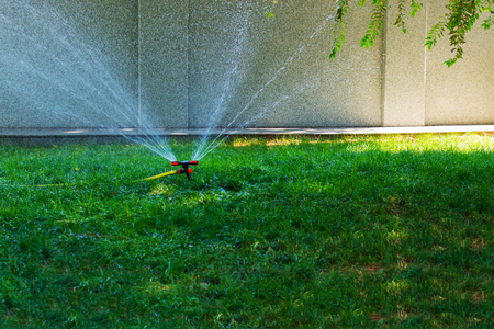 automatic watering of grass in the Park