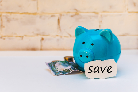 blue piggy Bank with crumpled dollar and space for text on white background