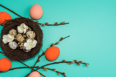 painted eggs and quail eggs in a nest with willow branches on a turquoise background. happy Easter card. Reklamní fotografie