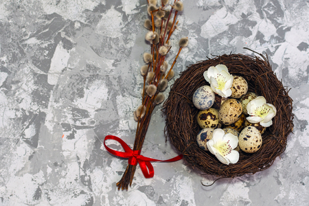 quail eggs in the nest and willow branch. happy Easter concept Фото со стока