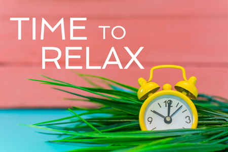 clock alarm in the grass and the inscription - time to relax Stock Photo - 122522270