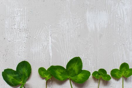 clover leaves on light background with copy space
