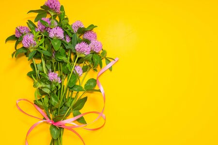 bouquet of clover on a yellow background