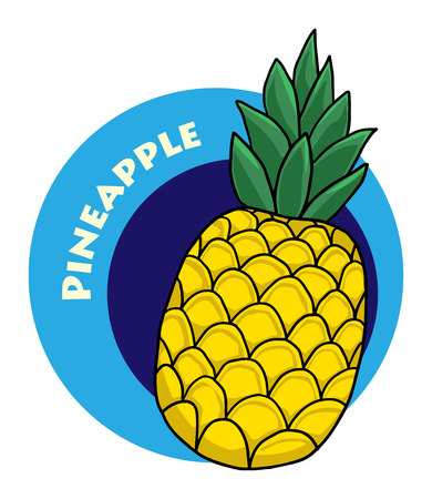 colorful drawn fruit label - pineapple Vector