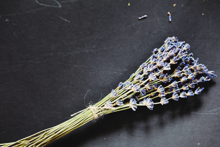tied in: Lavender herb flower sprigs tied in a bunch on the grey background Stock Photo