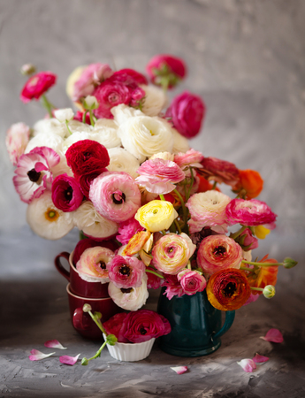 Ranunculus asiaticus or Persian buttercup bouquet in antique turquoise jug. Floral composition on grey backgound Standard-Bild