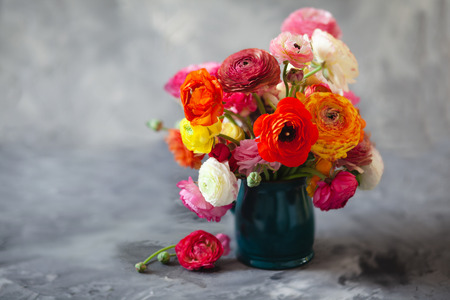 Ranunculus asiaticus or Persian buttercup bouquet in antique turquoise jug. Floral composition on grey backgound, copy space