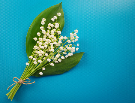 Beautiful white lilies of the valley on a turquoise background. Minimalist background with Lily of the valley colors.