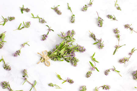A bunch of thyme grass on a light background close-up. Concept of folk medicine.