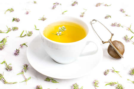 A Cup of tea with thyme flowers on a white background. The view from the top. Concept of folk medicine. Herbal drink.